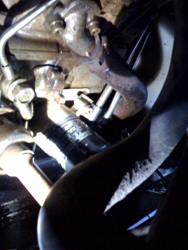 Yamaha Rhino  Engine Case