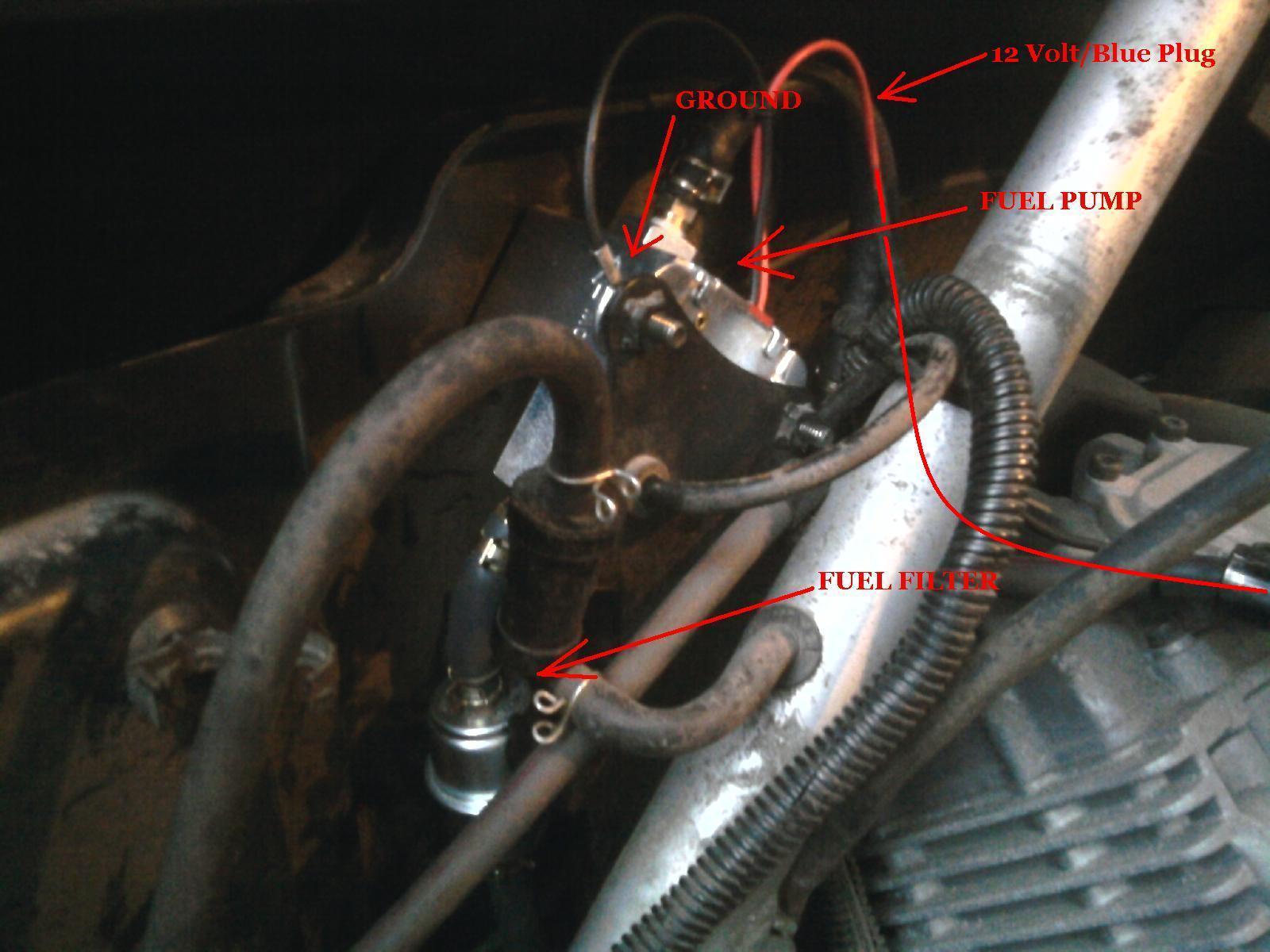 Yamaha Rhino  Fuel Pump Diagram